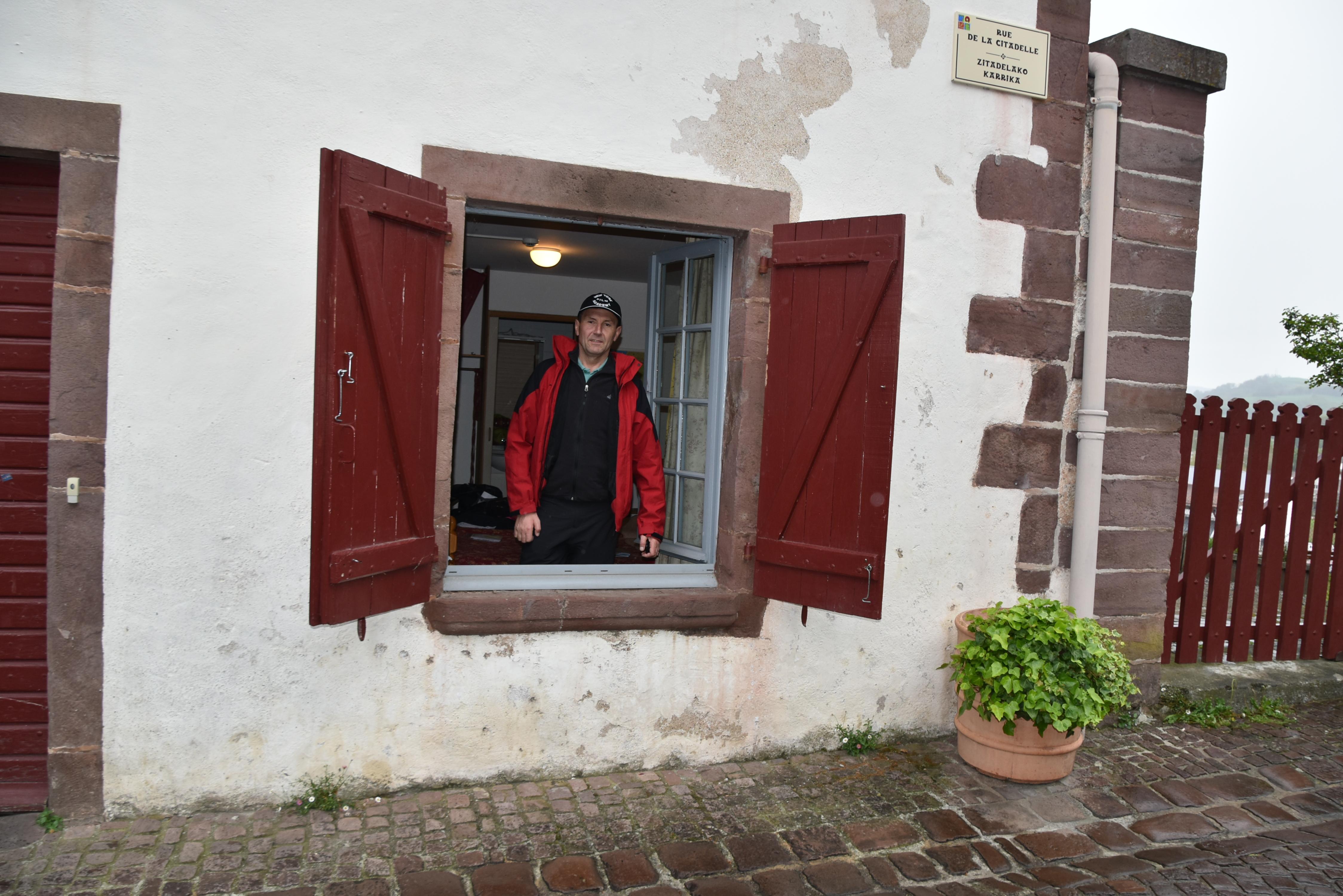 Peregrin na oknu alberga