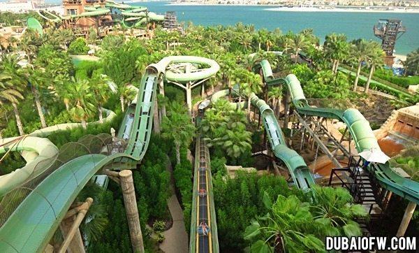 Park na Palmi